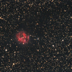 The Cocoon Nebula imaged from Roberts Creek on Nov. 19th 2015 with a Megrez 120mm, Canon 60Da, 187 mins total exposures at 1600 ISO. The Cocoon Nebula ((IC 5146) is a reflection]/emission nebula in the constellation Cygnus. The NGC description refers to IC 5146 as a cluster of 9.5 mag stars involved in a bright and dark nebulaI. It is located near the naked-eye star Pi Cygni, the open cluster NGC 7209 in Lacerta, and the bright open cluster M39. The cluster is about 4,000 ly away, and the central star that lights it formed about 100,000 years ago; the nebula is about 12 arcmins across, which is equivalent to a span of 15 light years. When viewing IC 5146, dark nebula Barnard 168 (B168) is an inseparable part of the experience, forming a dark lane that surrounds the cluster and projects westward forming the appearance of a trail behind the Cocoon. This is clearly visible in this image.